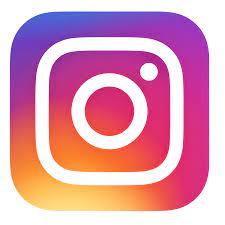 social media video instagram